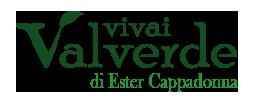 VivaiValverde